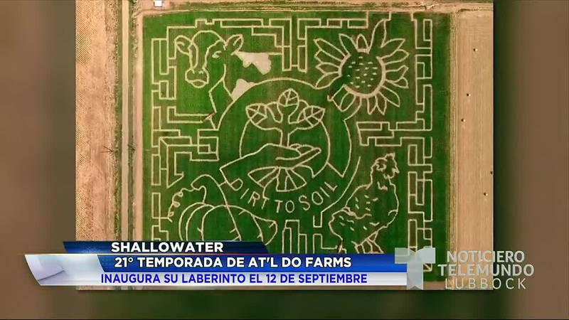 "En Shallowater, ""AT'L Do Farms"" inaugura su laberinto del 2021, marcando su 21° temporada."
